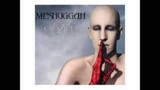 meshuggah combustion