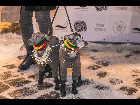 Mercedes Livestock Show 2020.Lights Festival Juros Sventė