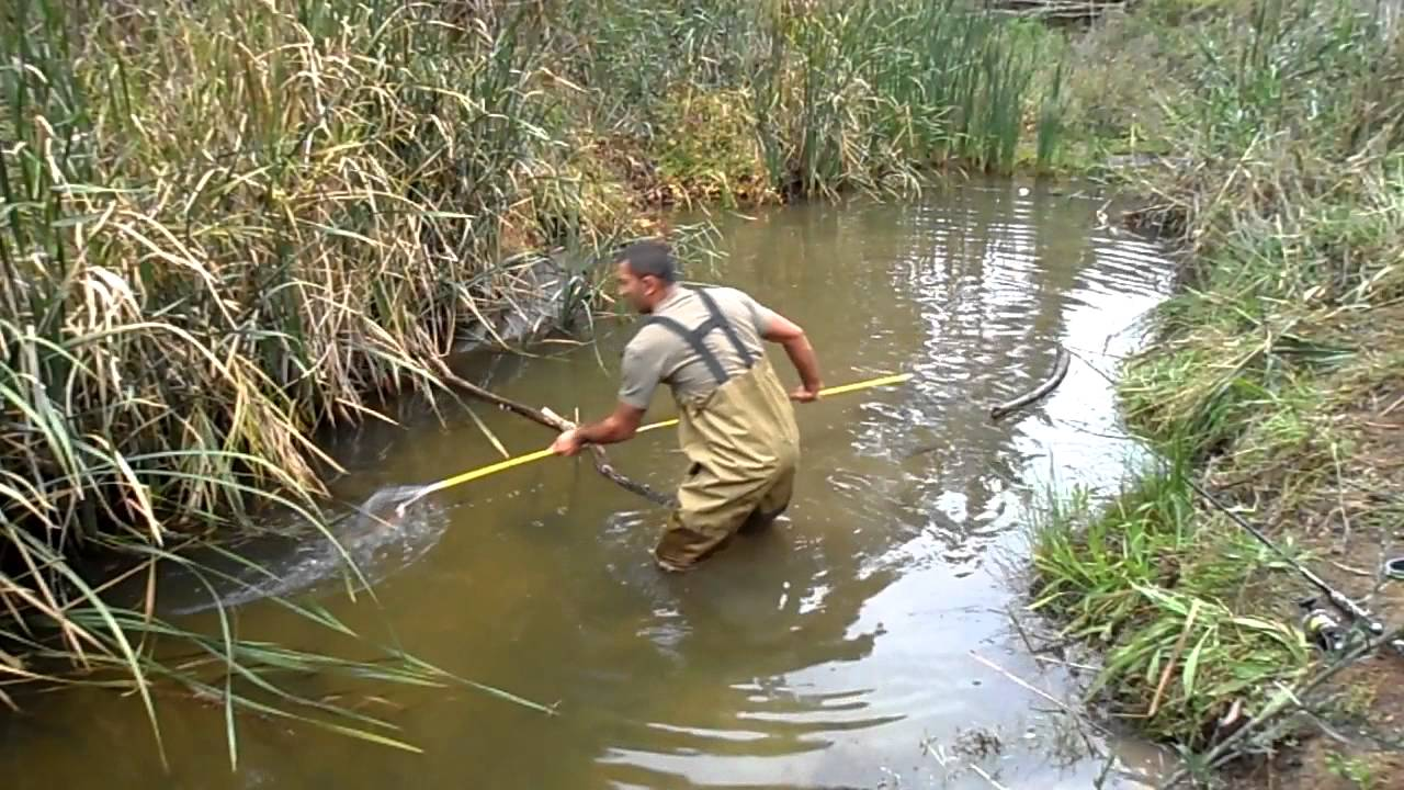 Carp spear fishing youtube for How to make a fishing spear