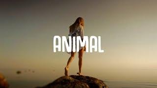Vicetone - Animal (Lyrics) ft. Jordan Powers & Bekah Novi