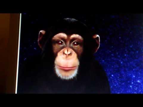 скачать игру чат бот обезьяна - фото 8