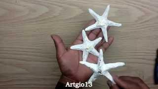 estrellas de mar reciclando periodico starfish recycling newspaper