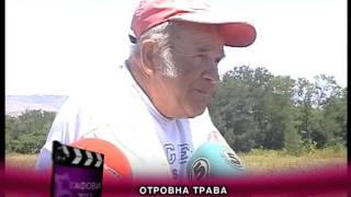 TV STAR GAFOVI 2012   OTROVNA TRAVA