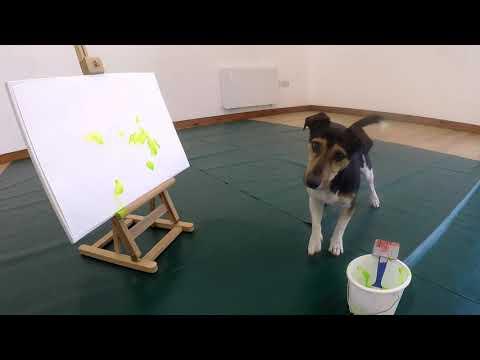 Paintbrush painting (taking brush from the bucket) - expert trick