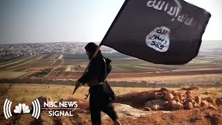 How U.S. Allies In Syria View The Prospect Of American Withdrawal | NBC News Signal