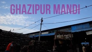 A Day At Asia's Largest Chicken Mandi In Ghazipur