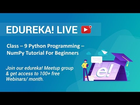 Class - 9 Python Programming | NumPy Tutorial For Beginners - Introduction To NumPy | Edureka thumbnail