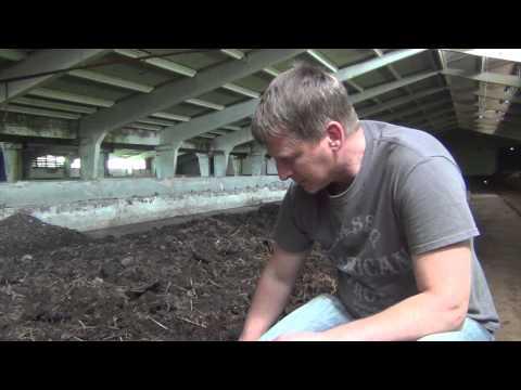 Видео: Как перерабатывать навоз кролика с помощью калифорнийского червя (вермикультивирование)