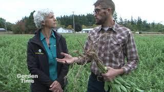 Portland Ashwagandha Farm Youtube