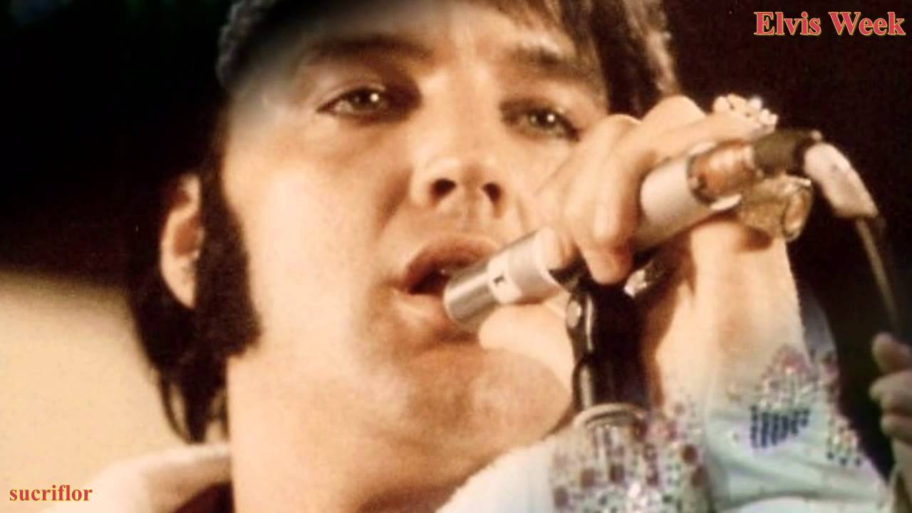 Elvis Presley Love Song Of The Year Youtube