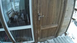 видео Ремонт деревянных дверей