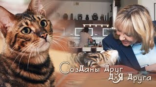"""Павлова и Кот. Склифосовский. """"Созданы друг для друга..."""""""
