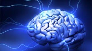 Brain Power - Sức manh của bộ não