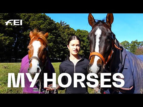Meet My Horses - With Dressage Rider Talicia Beardsmore | Guest Vlog