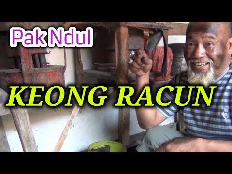 Pak Ndul - KEONG RACUN