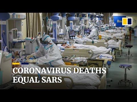 Global Coronavirus Deaths Equal Sars, While New Infections Drop