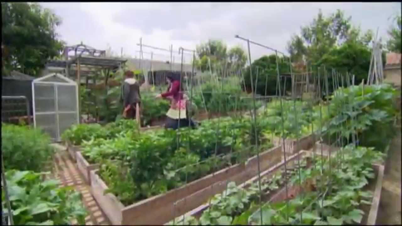 Jardin À L Américaine une famille américaine fait pousser 3 tonnes de nourriture