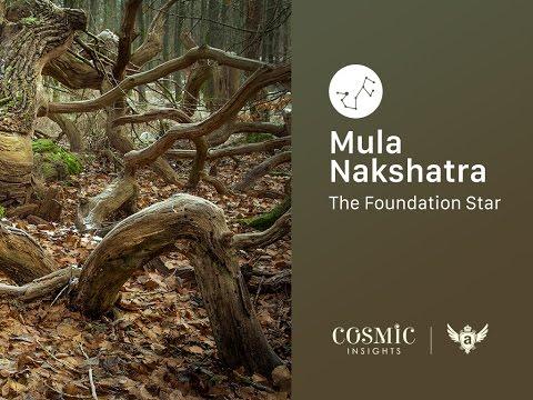 Saturday 8th Oct 2016: Mula Nakshatra, Abhukta Mula (Gandanta) and Boswellia Serrata