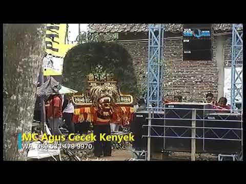 Atraksi merak Reog Suro Lami Terbaru Live Wonorejo