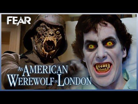 David's Disturbing Dreams   An American Werewolf In London