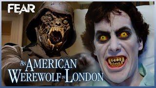 David\x27s Disturbing Dreams | An American Werewolf In London