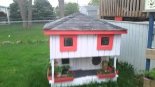 Cat House 2 of 2