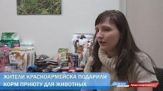 Жители Красноармейска подарили корм приюту для животных