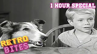 Lassie | 1 Hour Compilation | Full Episodes | Kids Cartoon | Videos For Kids