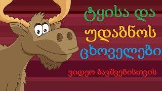 ვისწავლოთ გარეული ცხოველები(ნაწილი პირველი)/Viswavlot Gareuli Cxov