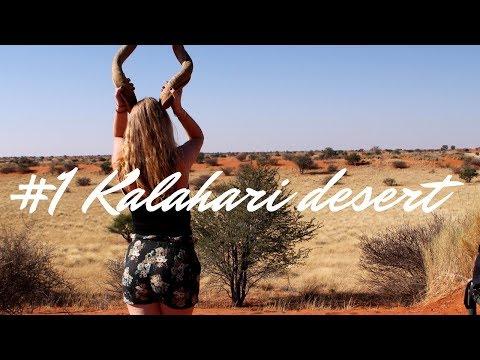 KALAHARI DESERT ● NAMIBIA #1 🇳🇦