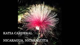 katia cardenal nicaragua nicaragüita