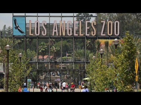 Comedian pranks zoo with bogus animal facts