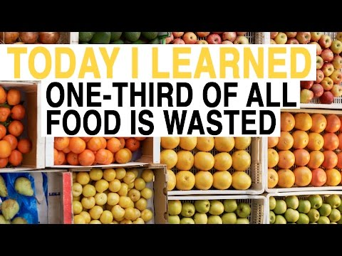 TIL: We Waste One-Third of Food Worldwide | Today I Learned