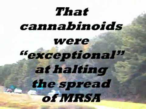 Natural Cure for MRSA???