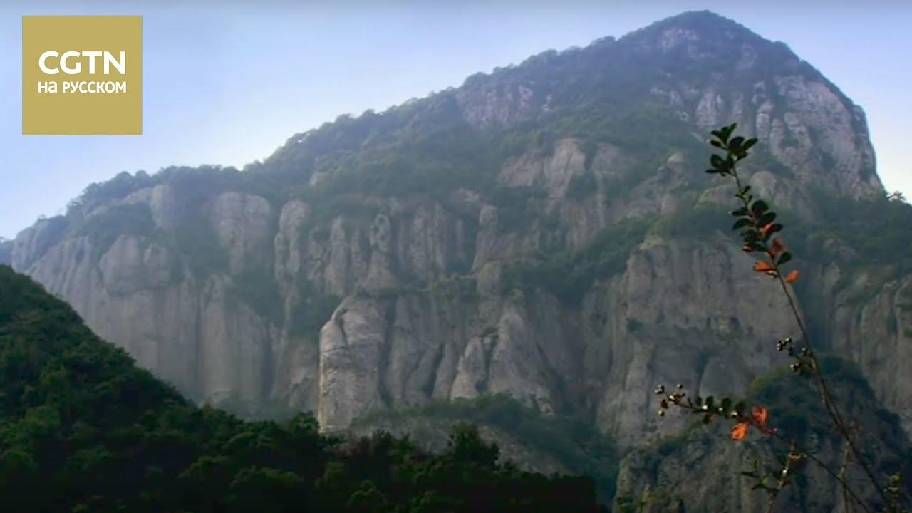 Великие мастера столетия Пань Тяньшоу Серия 3 Опорная сила [Age0+]