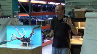 Low Light Planted Aquascape Workshop Part 1