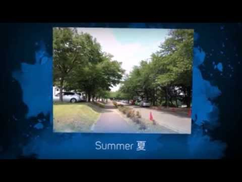 Introducing NUT video created by our international students