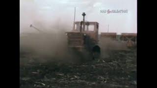 1991 год.  Фермерский опыт в Целиноградской области.