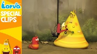 official larva funny collection part2 -  funny animation compilation