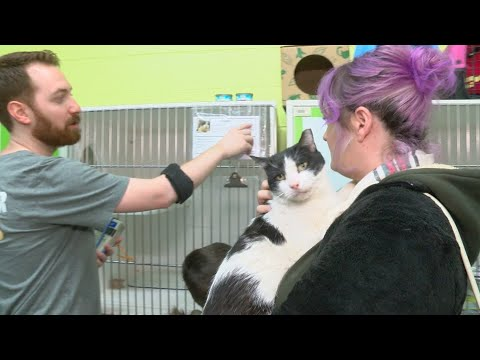 Free Adoption Event At Indianapolis Animal Care Services Shelter