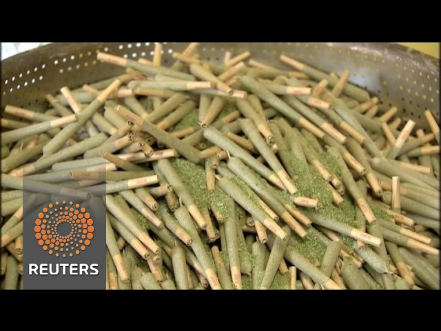 Israeli medical cannabis firms aim for new high