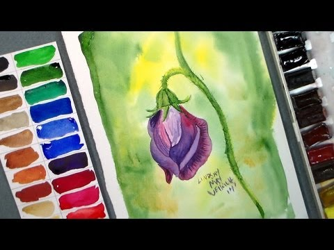 How to Paint a Sweet Pea Blossom in Watercolor - YouTube