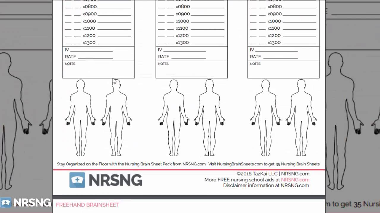 Nursing Brain Sheets Database Free Download Templates Of