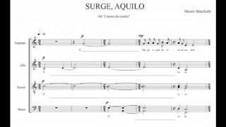 """Mauro Marchetti """"Surge, aquilo"""" (2003)"""