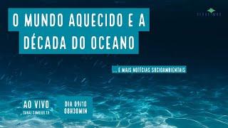O mundo aquecido, a década do oceano e mais notícias socioambientais - VERDE MAR #77