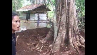 Penebang Kayu Jati Purba berusia ratusan tahun [situs Dalem Santapura]