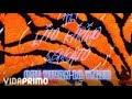 Descargar Lito kirino, tali, sensato - que vivan lo tiger [official audio]