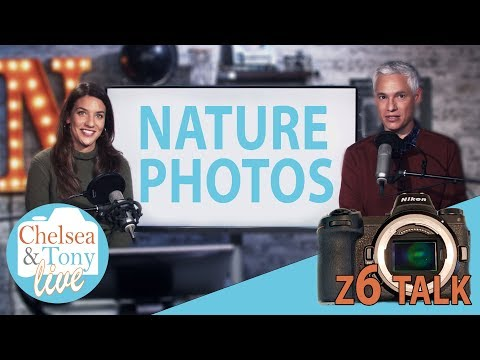 Z6 Talk, Nature Photos & CHIT CHAT!: TC LIVE