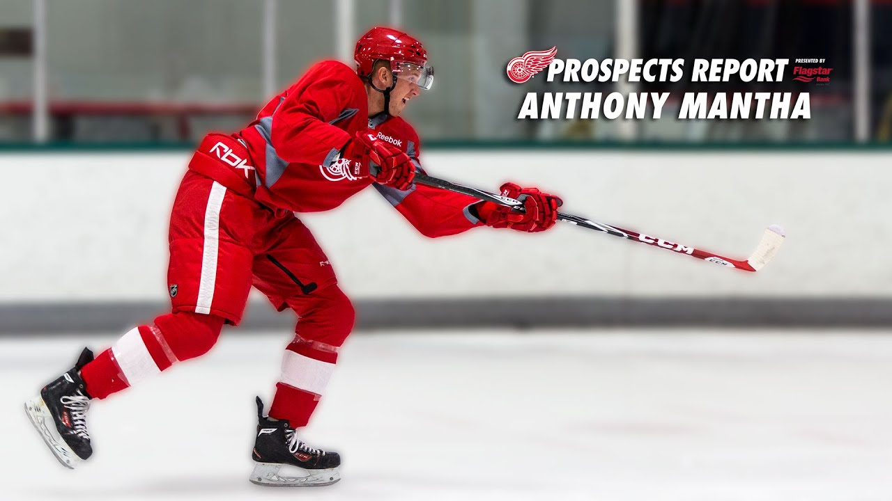 Anthony Mantha 2014