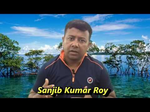Package Andaman Tour: How Does it help Tourists : Andaman on